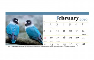 January 2010 work, rest, play with feng shui custom calendar_Page_04