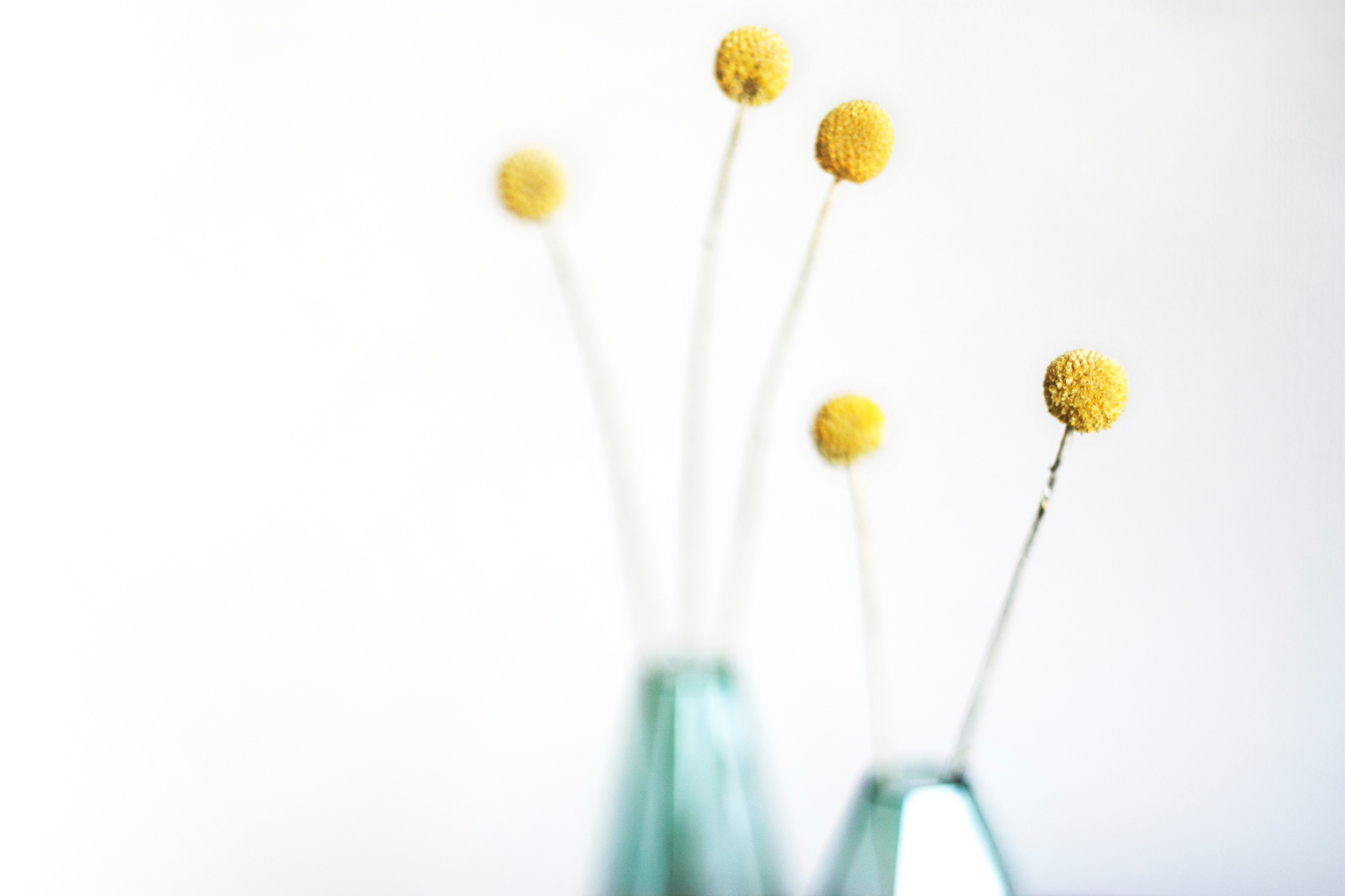 Space clearing can include adding flowers to your home to freshen and brighten it.